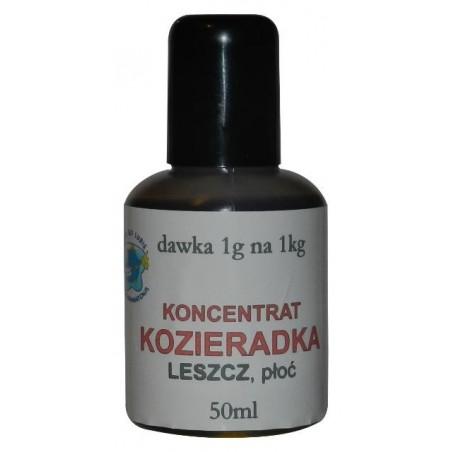 Koncentrat - Słodka Kukurydza